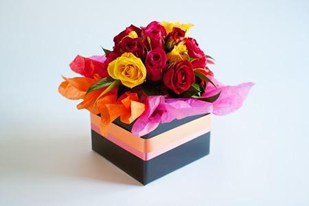 multicoloredroses