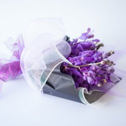 Bright Orchid Wrap