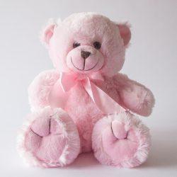 Teddy Bear Pink